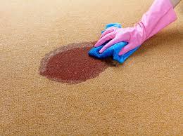 پاک کردن لکه چای از روی فرش