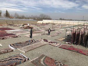 تصویری از قالیشویی طُرّه